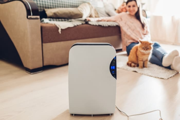 when to use a dehumidifier winter or summer
