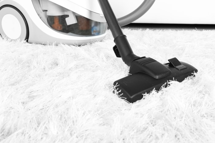 best carpet cleaners shampooers for pets